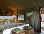 the hide national park tent room