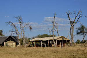 the hide national park tent view