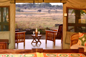 the hide national park  lodge interior