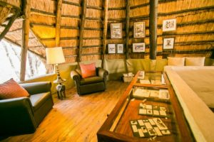 The Hide Main Areas