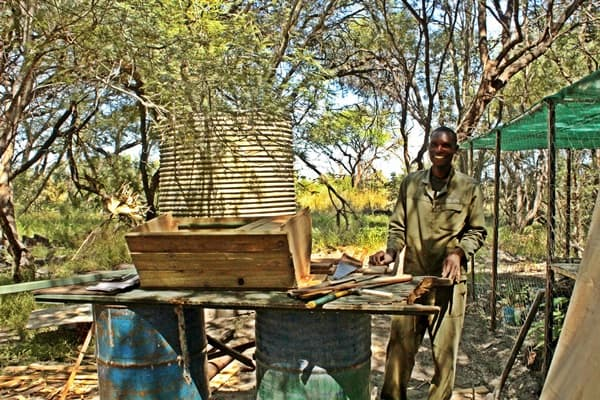 The Hide Behive Fencing