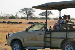 Family on a Game Drive The Hide