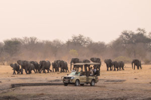 The Hide Game Drive