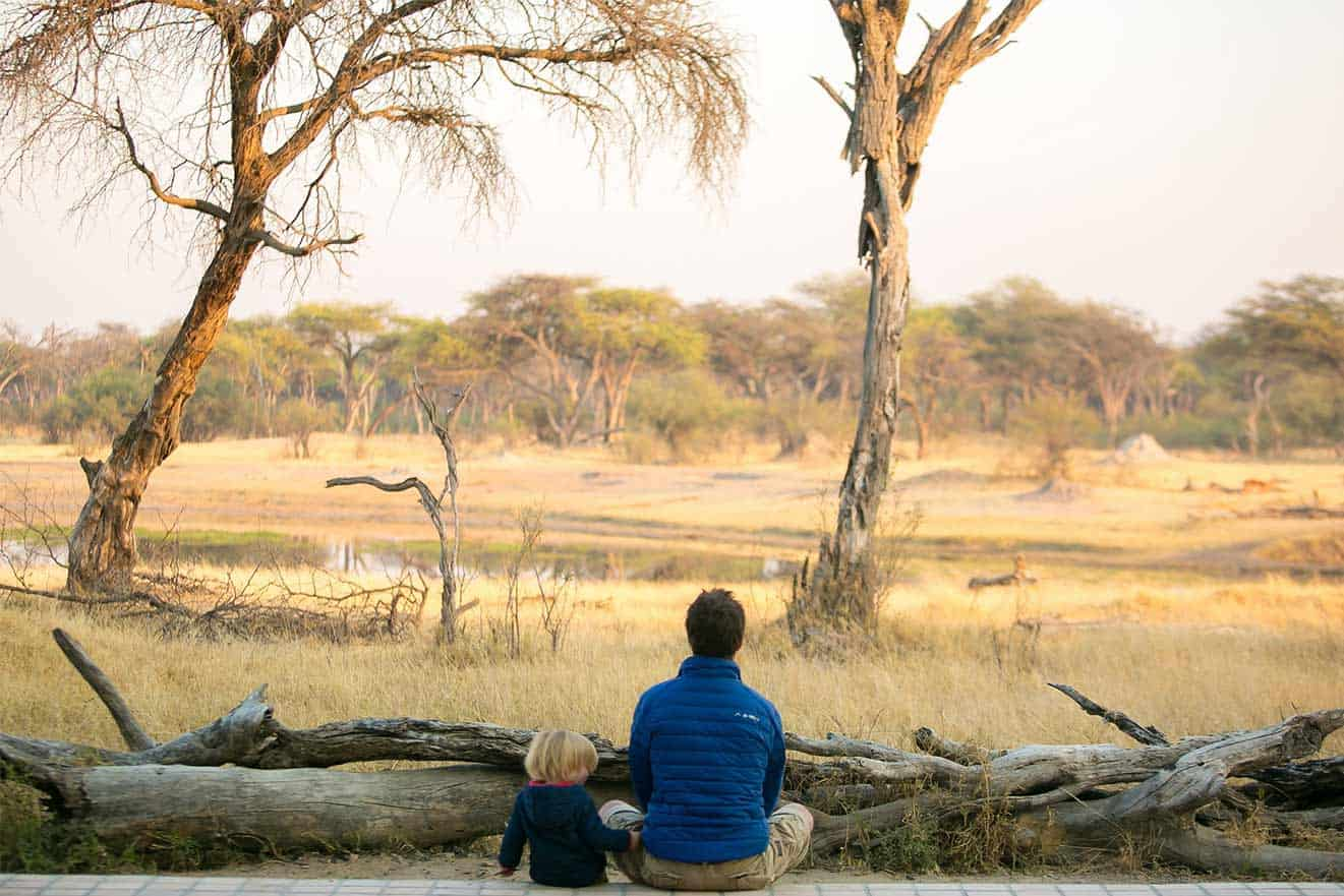 The Hide Safari Father Son Game Viewing