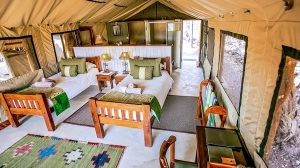 The Hide Main Lodge Accomodation
