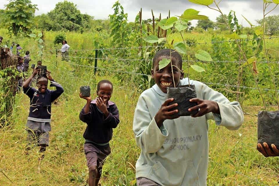 The Hide Community Trust Tree Planting