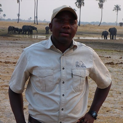 Theo Guide At The Hide
