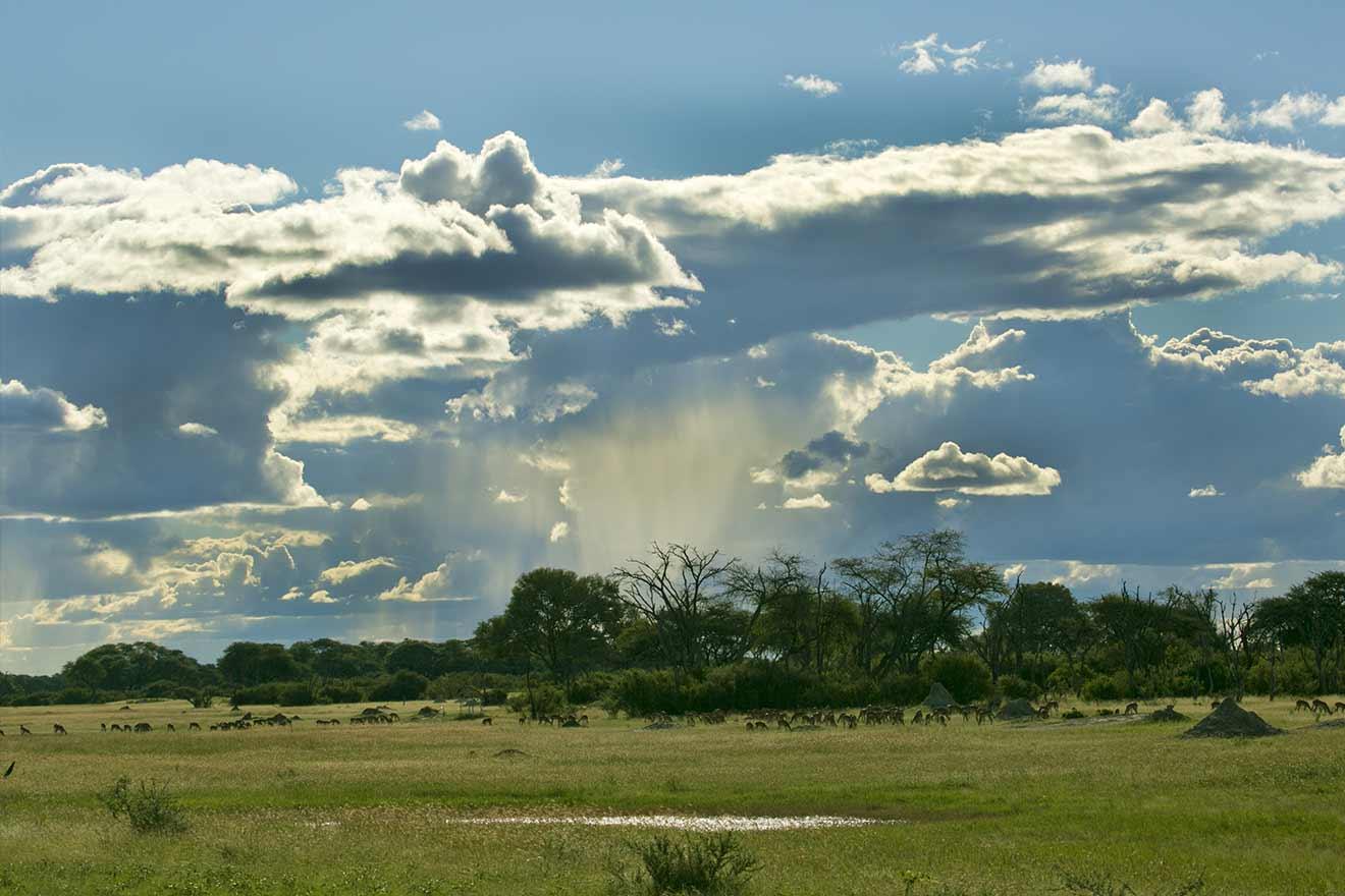 Beautiful Views The Hide Hwange National Park