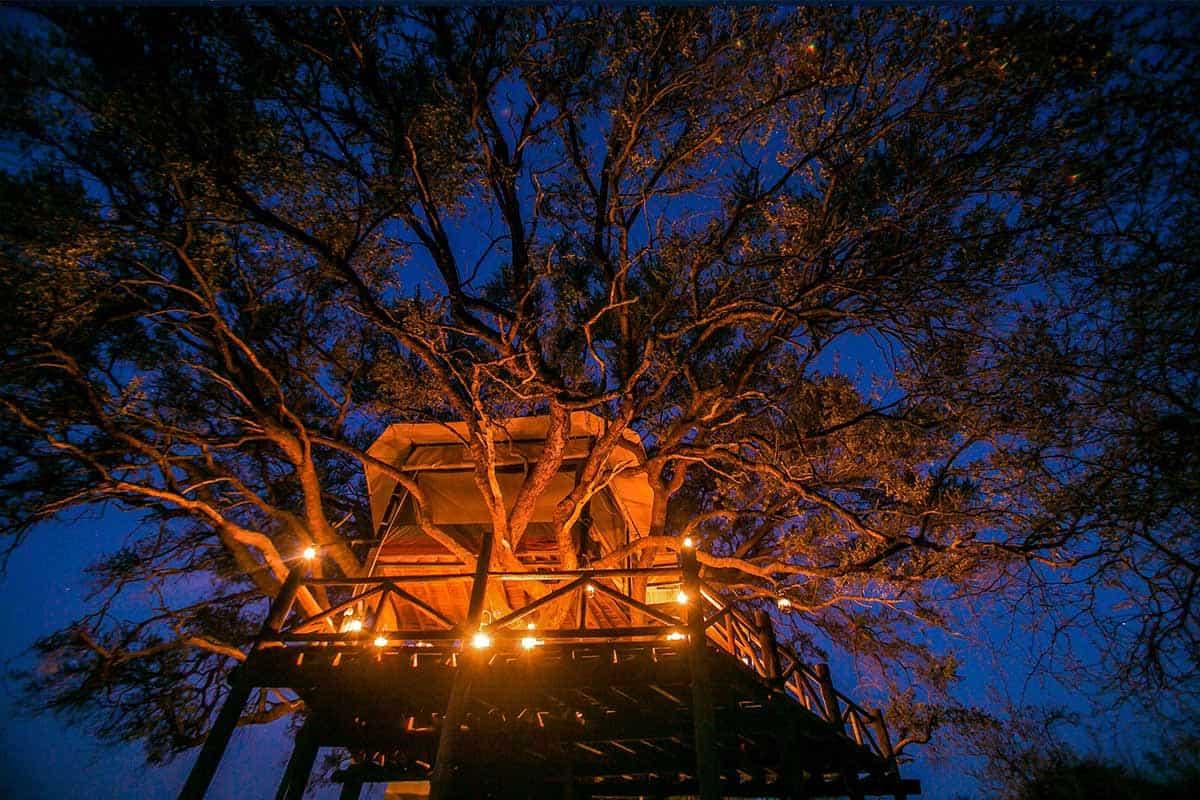 Dove's Nest The Hide Hwange National Park