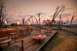 The Private Hide Hwange Gallery 1
