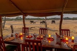 The Private Hide Hwange Gallery 3