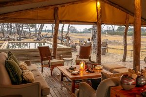 The Private Hide Hwange Gallery
