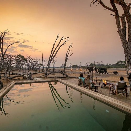 The Private Hide Hwange Gallery 4