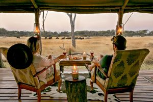 The Private Hide Hwange Gallery 8
