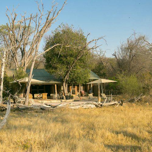 Family Safari The Hide Toms