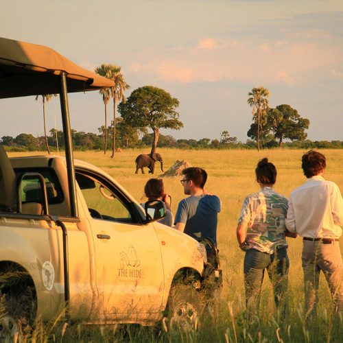 Game Drive The Hide sunset