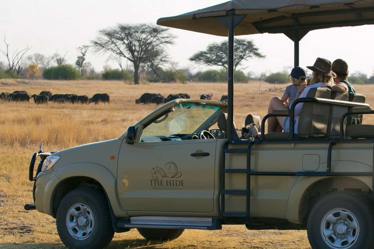 The Hide Safari Options
