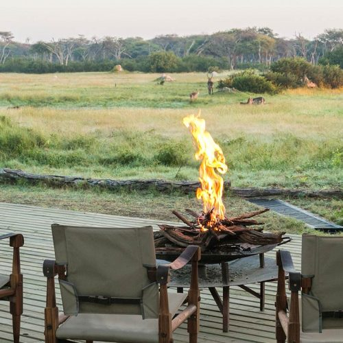Hide Main Areas Wildlife View Hwange National Park