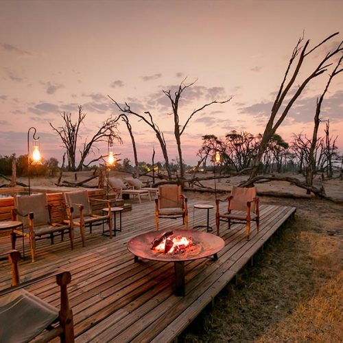 The Private Hide Hwange Gallery 6